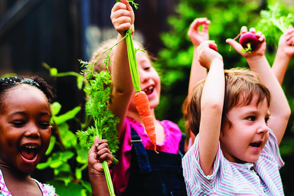 Læring og platform der understøtter det daglige arbejde med barnets læringsproces.
